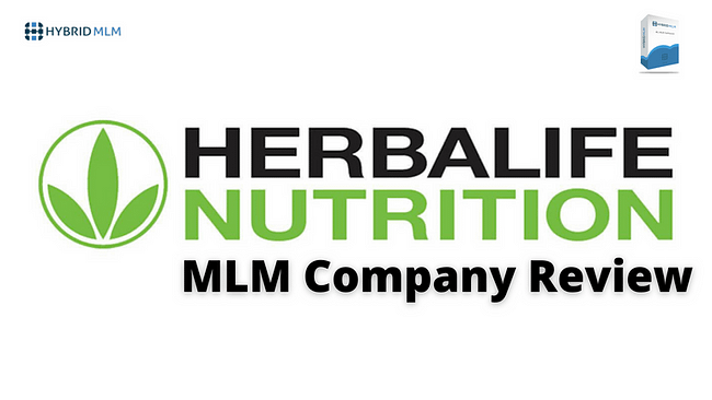 HERBALIFE NUTRITION MLM Company Review