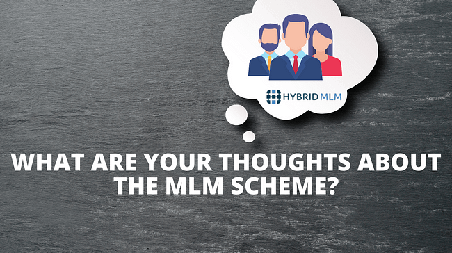 What are your thoughts about the MLM scheme?